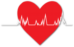 Heart attacks and socio-economic environment in the City of Vienna